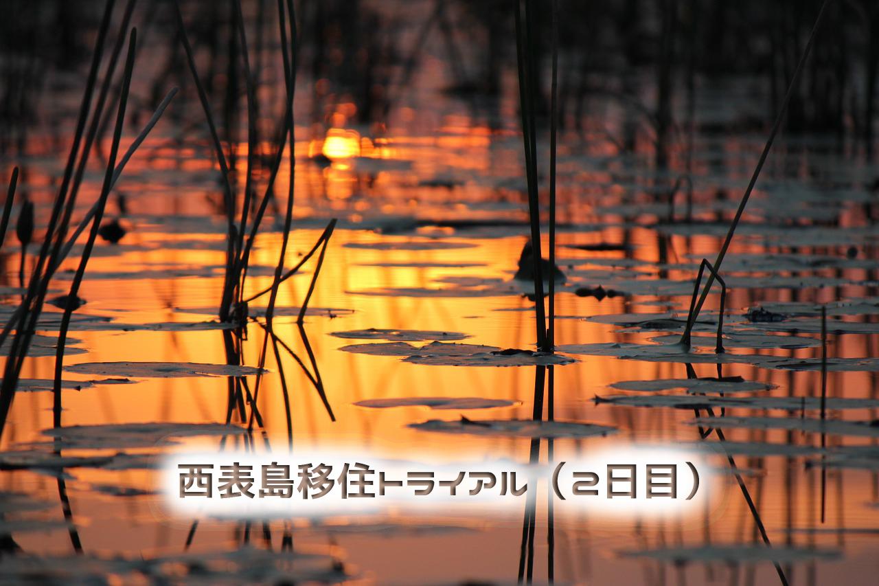 【西表島移住トライアル(2日目)】