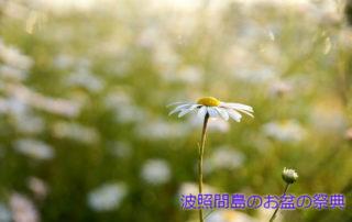 flowers-634739_640_加工