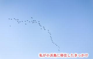 sky-1230071_1280