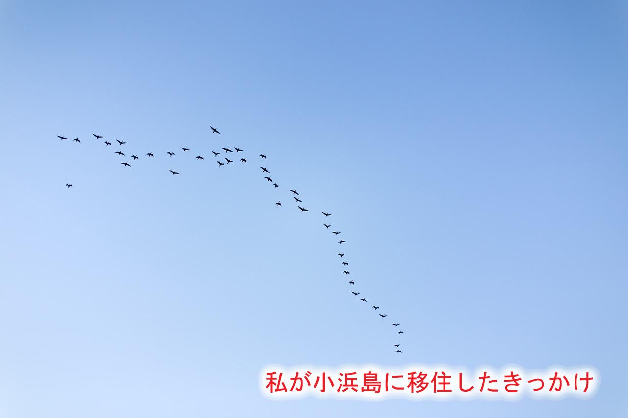 私が小浜島に移住したきっかけ