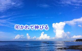 typhoon-1646887_1280