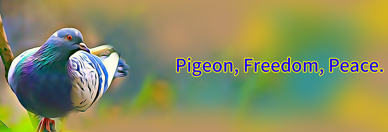 Pigeon, Freedom, Peace.