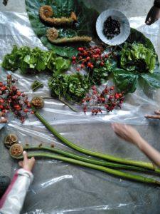 20180119_三木香織_西表島のジャングルへ山菜採り_07