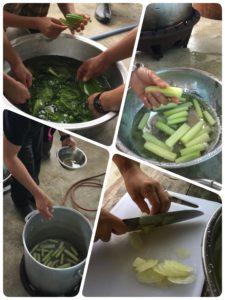 20180119_三木香織_西表島のジャングルへ山菜採り_10