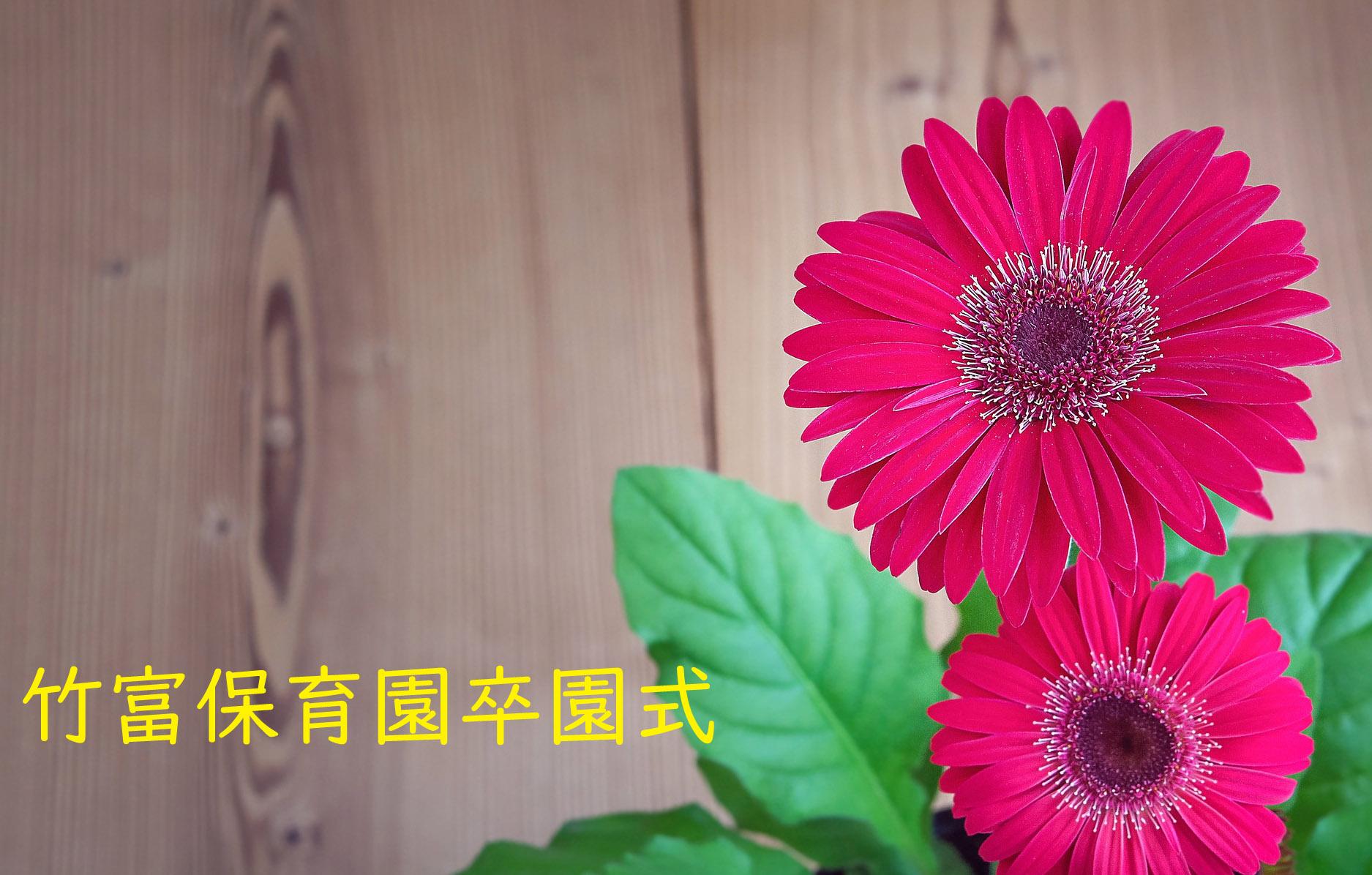 竹富保育園卒園式