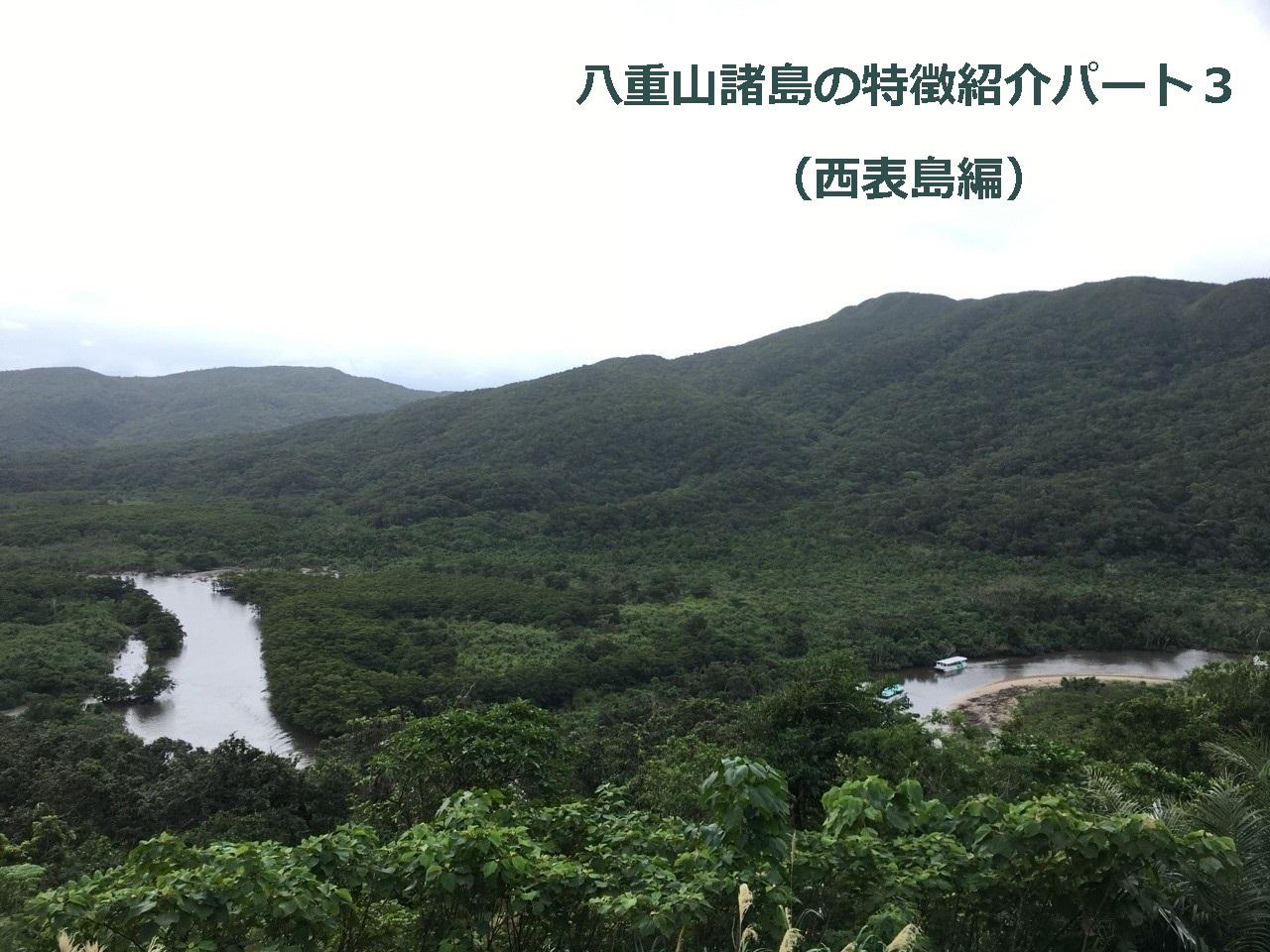 八重山諸島の特徴紹介パート3(西表島編)